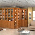книжный шкаф стандарт
