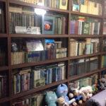 книжный шкаф построить