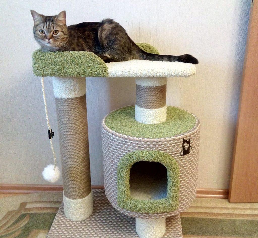 крыши делаются сделать домик для кошки своими руками фото короткий вариант