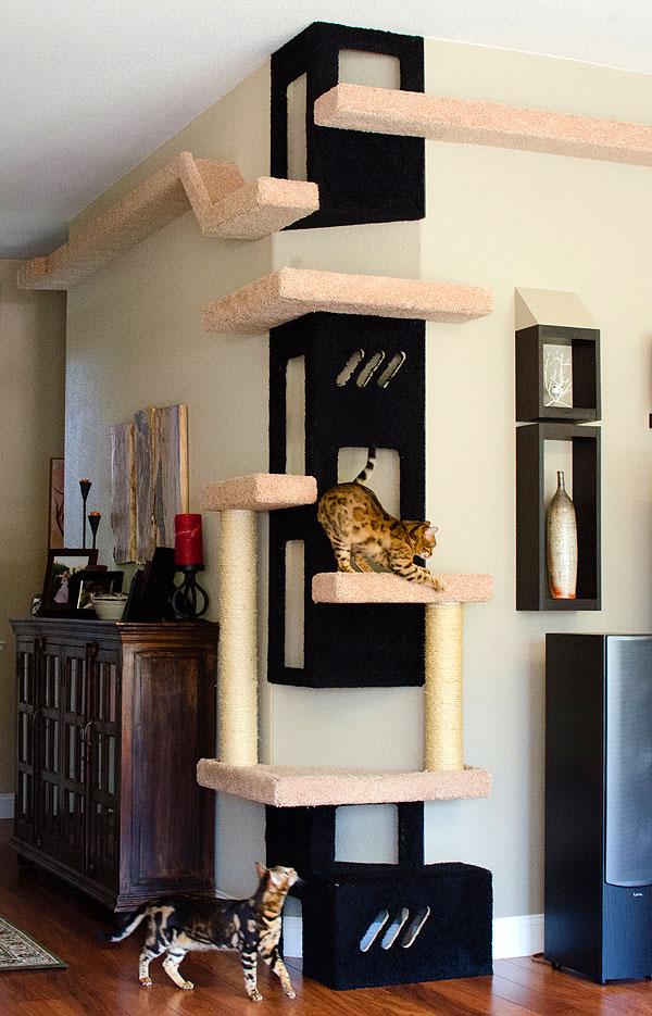 полки на стену для кошек фото баланс между