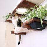 настенные полки для кошек декор идеи