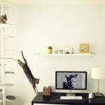 настенные полки для кошек интерьер фото