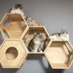 настенные полки для кошек фото варианты