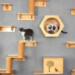настенные полки для кошек фото вариантов