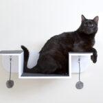 настенные полки для кошек идеи фото