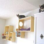 настенные полки для кошек обзор