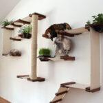 настенные полки для кошек декор