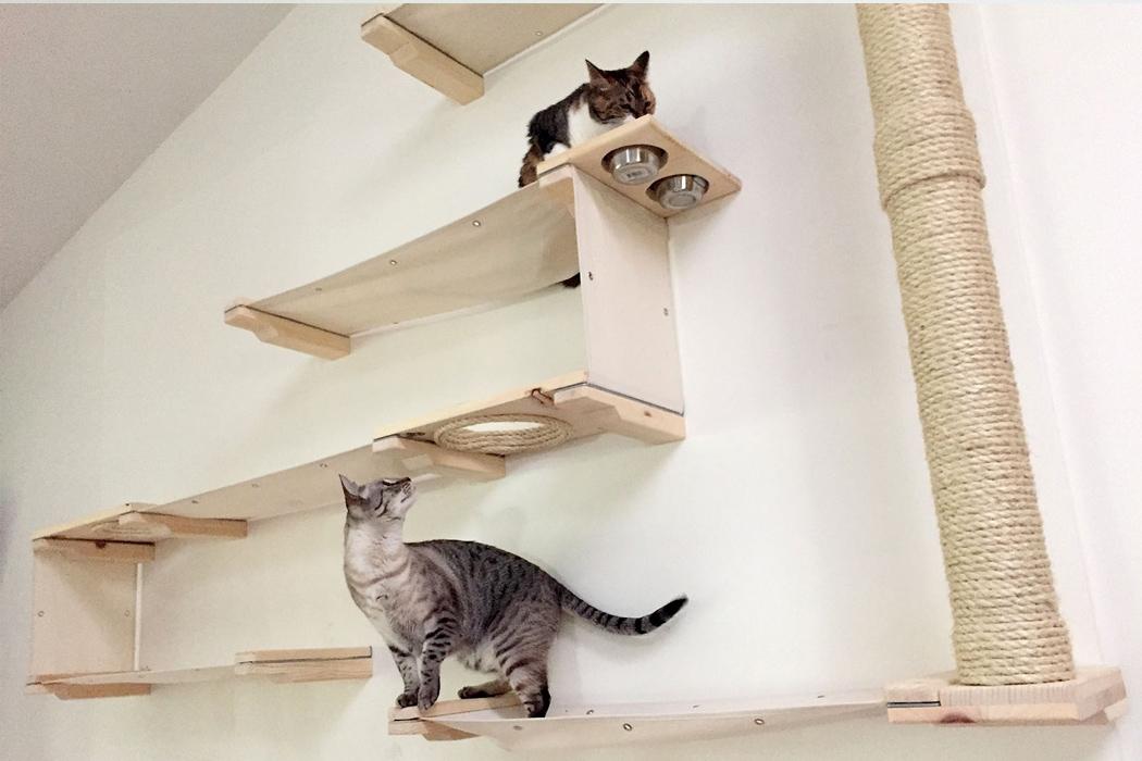 полки на стену для кошек фото галочка инстаграме возле