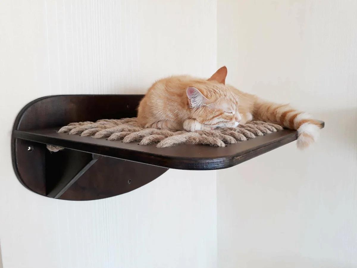настенные полки для кошек идеи дизайн