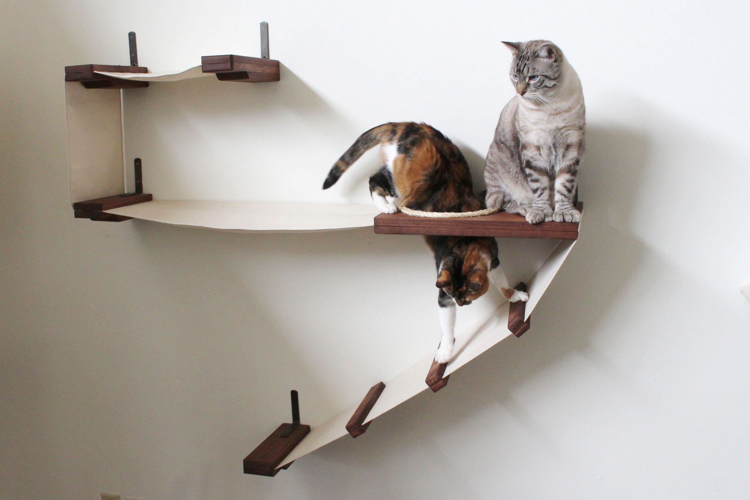 настенные полки для кошек идеи