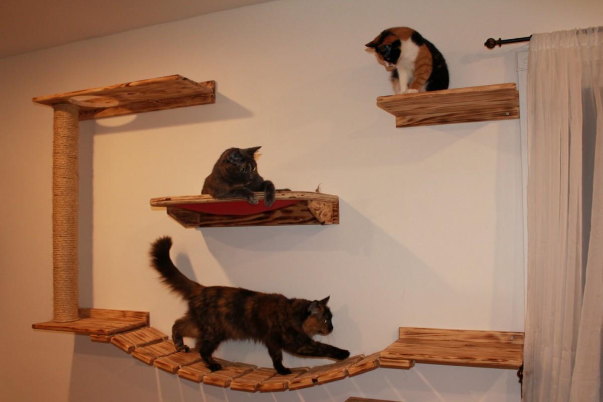 Настенные полки для кошек своими руками из дерева