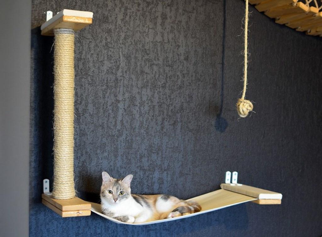 Настенные полки для кошек оформление