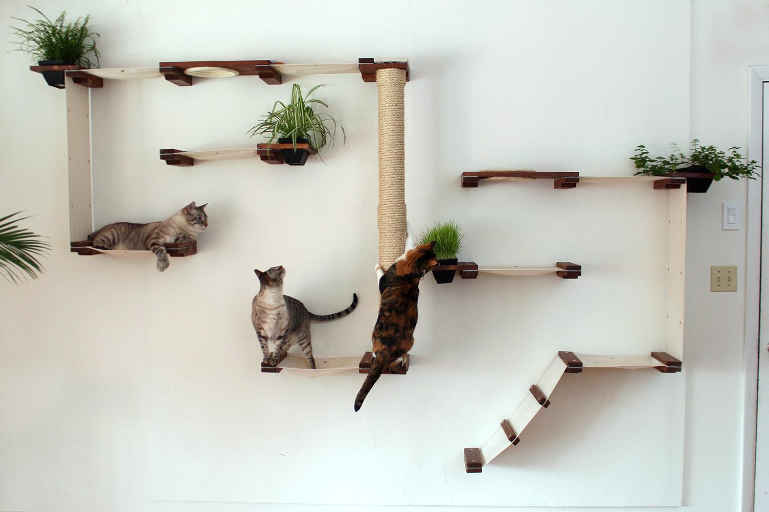 полки на стену для кошек фото используете картон, бумагу