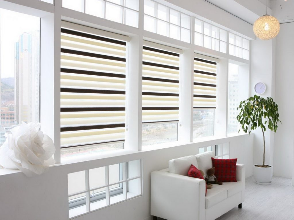 рулонные шторы зебра фото дизайн