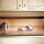 сушилка для кухонного шкафа идеи интерьер