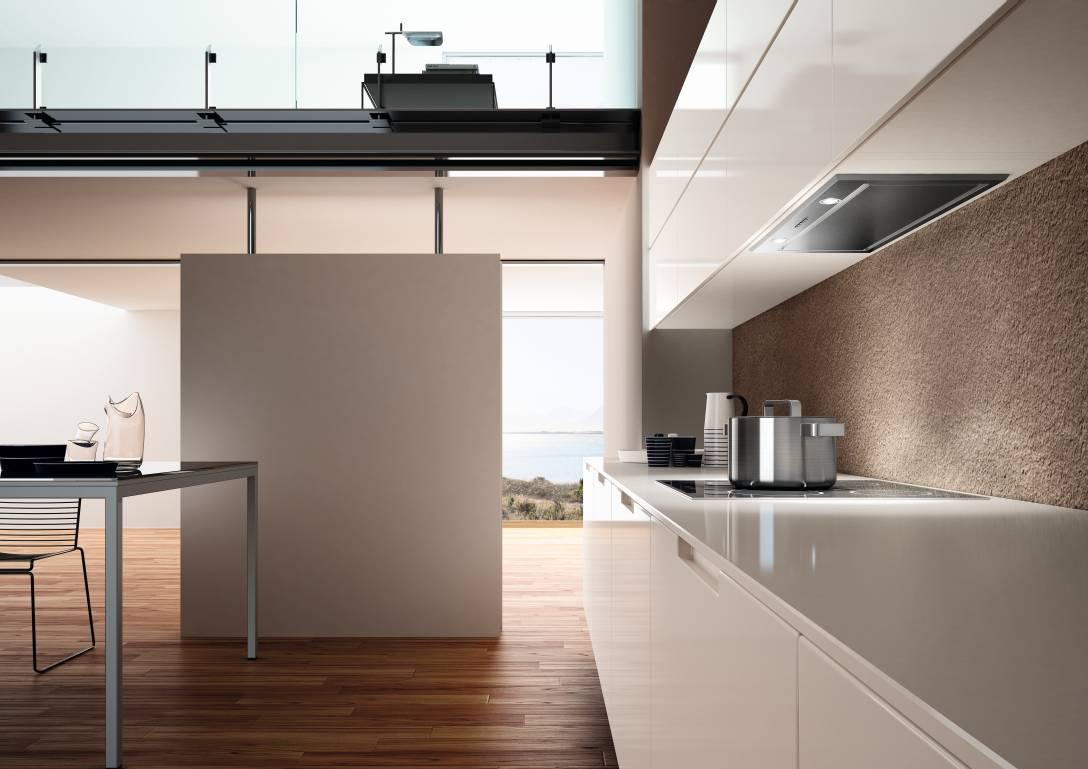 снова переходит фото кухонь со встроенной вытяжкой сделанные