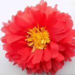 цветы из салфеток фото обзор