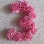 цифра из цветов