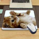 коврик для мышки варианты идеи