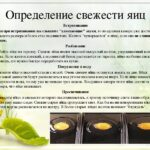 проверка свежести яйца