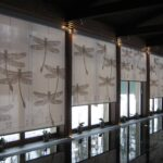 рулонные шторы со стрекозами