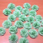 зеленые гвоздики